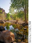 Купить «Аризона. Каньон Фиш Крик.», фото № 1821744, снято 19 марта 2009 г. (c) Julia Nelson / Фотобанк Лори