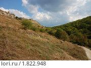 Крым (2009 год). Стоковое фото, фотограф Инна Агадецкая / Фотобанк Лори