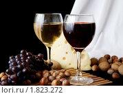 Купить «Натюрморт с вином, сыром и орехами», фото № 1823272, снято 12 июля 2009 г. (c) Яков Филимонов / Фотобанк Лори
