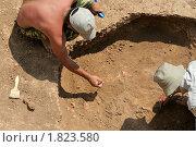 Купить «Студенты на археологической практике работают с найденными останками человека бронзового века. Раскопки кургана в Ремонтненском районе Ростовской области», фото № 1823580, снято 19 ноября 2017 г. (c) A Челмодеев / Фотобанк Лори