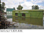 Купить «Наводнение», фото № 1831836, снято 26 июня 2010 г. (c) Free Wind / Фотобанк Лори