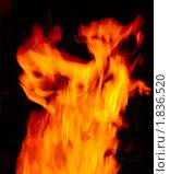 Купить «Огонь», фото № 1836520, снято 11 июля 2010 г. (c) Семин Илья / Фотобанк Лори