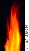 Купить «Огонь», фото № 1839656, снято 11 июля 2010 г. (c) Семин Илья / Фотобанк Лори
