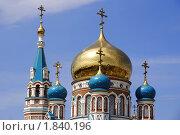 Купить «Омск. Успенский собор. Купола», фото № 1840196, снято 8 января 2009 г. (c) Julia Nelson / Фотобанк Лори