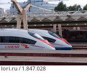 """Скоростные поезда """"Сапсан"""" на Октябрьской железной дороге (2010 год). Редакционное фото, фотограф Марков Николай / Фотобанк Лори"""