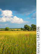 Купить «Летний пейзаж», фото № 1847596, снято 11 июля 2010 г. (c) Яков Филимонов / Фотобанк Лори