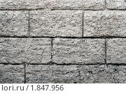 Купить «Оформление цоколя здания из бетонных кирпичей», фото № 1847956, снято 18 июля 2010 г. (c) Антон Железняков / Фотобанк Лори