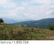 Купить «Вид со скалы Демерджи», фото № 1850724, снято 8 июля 2010 г. (c) Светлана Овчинникова / Фотобанк Лори