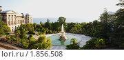 Купить «Сочи. Панорама санатория имени Серго Орджоникидзе», фото № 1856508, снято 20 июля 2010 г. (c) Анна Мартынова / Фотобанк Лори
