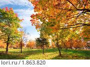 Купить «Осенний пейзаж», фото № 1863820, снято 3 октября 2009 г. (c) Евгений Захаров / Фотобанк Лори
