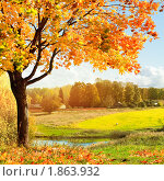 Купить «Осенний пейзаж», фото № 1863932, снято 3 октября 2009 г. (c) Евгений Захаров / Фотобанк Лори