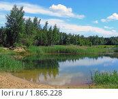Купить «Летний пейзаж», эксклюзивное фото № 1865228, снято 10 июня 2010 г. (c) lana1501 / Фотобанк Лори