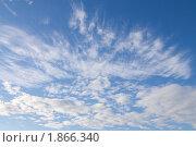 Купить «Белые облака на синем небе», эксклюзивное фото № 1866340, снято 28 июня 2010 г. (c) Вячеслав Палес / Фотобанк Лори