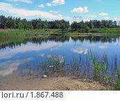 Купить «Летний пейзаж», эксклюзивное фото № 1867488, снято 10 июня 2010 г. (c) lana1501 / Фотобанк Лори