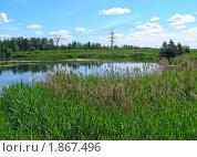 Купить «Летний пейзаж», эксклюзивное фото № 1867496, снято 10 июня 2010 г. (c) lana1501 / Фотобанк Лори
