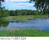 Купить «Летний пейзаж», эксклюзивное фото № 1867524, снято 10 июня 2010 г. (c) lana1501 / Фотобанк Лори