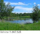 Купить «Летний пейзаж», эксклюзивное фото № 1867528, снято 10 июня 2010 г. (c) lana1501 / Фотобанк Лори