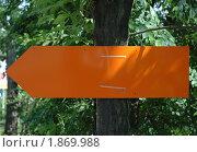 Оранжевая табличка на дереве. Стоковое фото, фотограф Savenkova Natalia Anatolievna / Фотобанк Лори
