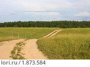 Купить «Дорога, ведущая к лесу», фото № 1873584, снято 19 июля 2010 г. (c) Полина Столбушинская / Фотобанк Лори