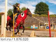 Купить «Выборгский рыцарский турнир», фото № 1876020, снято 31 июля 2010 г. (c) Алексей Ширманов / Фотобанк Лори