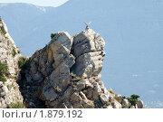 Купить «Скульптура птицы на мысе Ай-Тодор», фото № 1879192, снято 23 июля 2010 г. (c) Антон Стариков / Фотобанк Лори