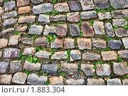 Купить «Брусчатка», фото № 1883304, снято 25 июля 2010 г. (c) Руслан Якубов / Фотобанк Лори