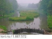 Лесопарк в дыму. Стоковое фото, фотограф Алёшина Оксана / Фотобанк Лори