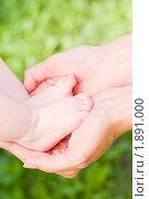 Купить «Ножки новорожденного в материнских руках», фото № 1891000, снято 16 июля 2010 г. (c) Михаил Павлов / Фотобанк Лори
