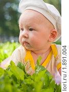 Купить «Маленький мальчик лежит на траве», фото № 1891004, снято 16 июля 2010 г. (c) Михаил Павлов / Фотобанк Лори