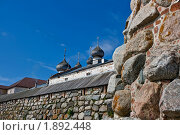 Купола.... (2008 год). Редакционное фото, фотограф Вячеслав Копотий / Фотобанк Лори
