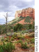 Купить «Аризона. Седона - страна красных скал», фото № 1892768, снято 24 мая 2009 г. (c) Julia Nelson / Фотобанк Лори