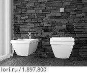 Купить «Современный туалет», фото № 1897800, снято 20 февраля 2019 г. (c) Максим Бондарчук / Фотобанк Лори