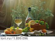 Купить «Белое вино.виноград,лимон,абрикосы и сыр», фото № 1899096, снято 15 декабря 2019 г. (c) Марина Володько / Фотобанк Лори