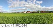 Купить «Зеленый луг», фото № 1902644, снято 14 июня 2010 г. (c) Наталья Чуб / Фотобанк Лори