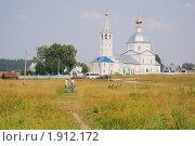 Купить «Женский монастырь в Санино, Суздаль», фото № 1912172, снято 24 июля 2010 г. (c) Ivan Bukarev / Фотобанк Лори
