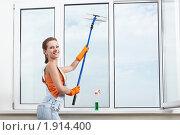 Купить «Девушка моет окно», фото № 1914400, снято 27 июля 2010 г. (c) Raev Denis / Фотобанк Лори