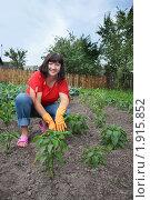 Купить «Женщина в огороде», фото № 1915852, снято 6 июля 2010 г. (c) Майя Крученкова / Фотобанк Лори