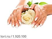 Купить «Свадебный маникюр», фото № 1920100, снято 18 июля 2010 г. (c) Сергей Дашкевич / Фотобанк Лори