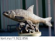 Купить «Астрахань. Памятник вобле», фото № 1922856, снято 14 января 2010 г. (c) Михаил Ворожцов / Фотобанк Лори