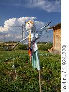 Пугало огородное (2010 год). Редакционное фото, фотограф Яна Королёва / Фотобанк Лори