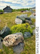 Купить «Большой Соловецкий остров. Пейзаж с валунами», фото № 1926452, снято 19 июня 2010 г. (c) Татьяна Федулова / Фотобанк Лори