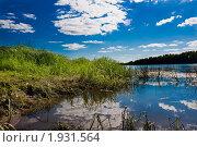 Купить «Тихая заводь», фото № 1931564, снято 20 июня 2010 г. (c) Муратов Андрей Анатольевич / Фотобанк Лори