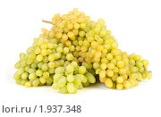 Купить «Виноград на белом фоне», фото № 1937348, снято 18 августа 2010 г. (c) Елена / Фотобанк Лори