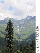 Горы Абхазии (2010 год). Редакционное фото, фотограф Дмитрий К / Фотобанк Лори
