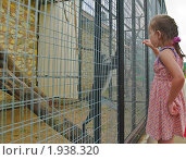 """Купить «Девочка кормит обезьянку. Парк птиц """"Воробьи""""», эксклюзивное фото № 1938320, снято 10 июля 2010 г. (c) Алёшина Оксана / Фотобанк Лори"""