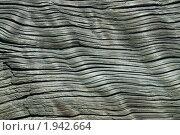 Купить «Текстура очень старой древесины», фото № 1942664, снято 9 июня 2009 г. (c) Игорь Долгов / Фотобанк Лори