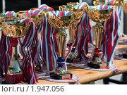 Кубки победителей. Стоковое фото, фотограф Александр Рыбакин / Фотобанк Лори