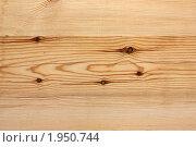Купить «Текстура дерева», фото № 1950744, снято 10 июня 2010 г. (c) Гер Олег / Фотобанк Лори