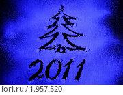 Купить «Новогодний рисунок на снежном стекле», фото № 1957520, снято 4 ноября 2009 г. (c) Дорощенко Элла / Фотобанк Лори