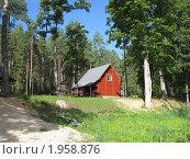 Дом в лесу. Стоковое фото, фотограф Надежда Науменко / Фотобанк Лори